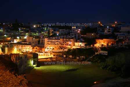 Carvoeiro by night