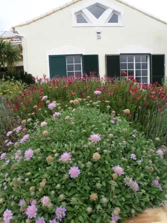 Conservation articles portugal sustainable mediterranean gardening - Nature integrated houses perfect harmony ...