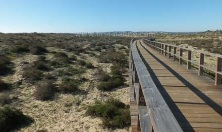 Boardwalk at Ria de Alvor